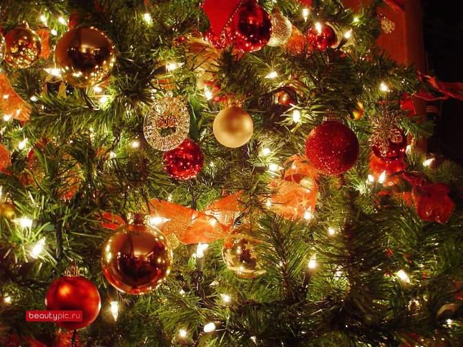 inner Christmas tree