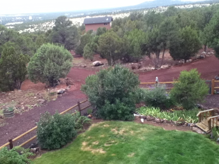 Overlooking the yard & property near Show Low, AZ
