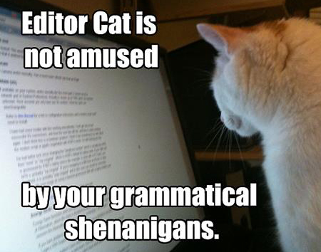 editor-cat