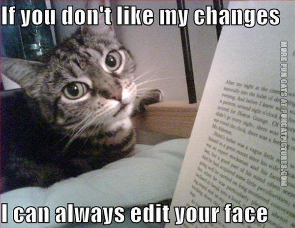 funny-cat-pics-edit-your-face